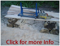 Panther mill 2 chainsaw mill portable saw mill.